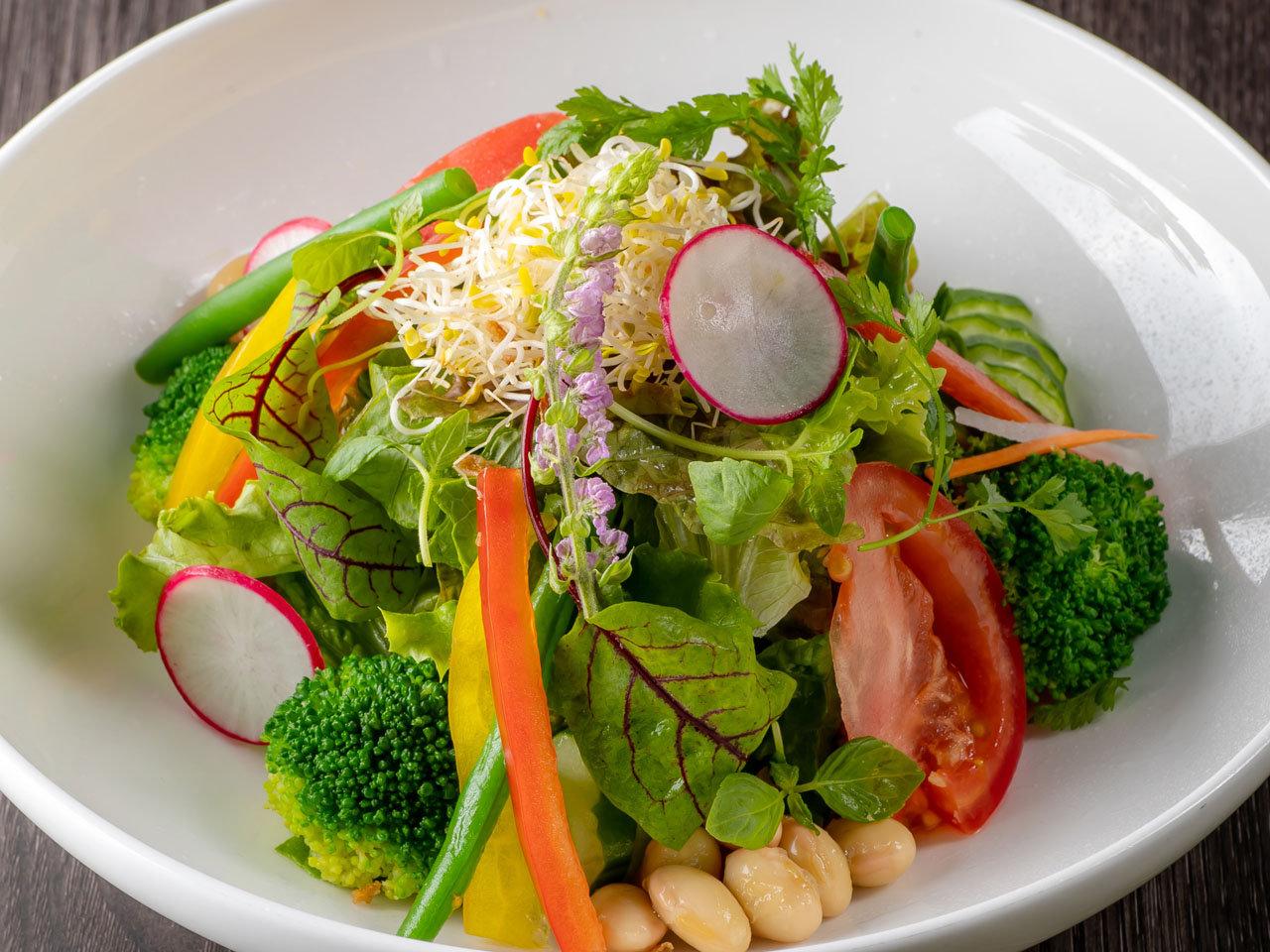 採れたて新鮮野菜とアルファルファのベジタブルサラダサムネイル